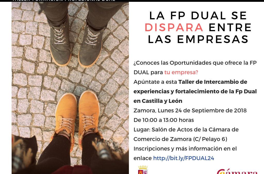 Taller Práctico de FP Dual: Intercambio de experiencias y fortalecimiento de la Fp Dual en Castilla y León
