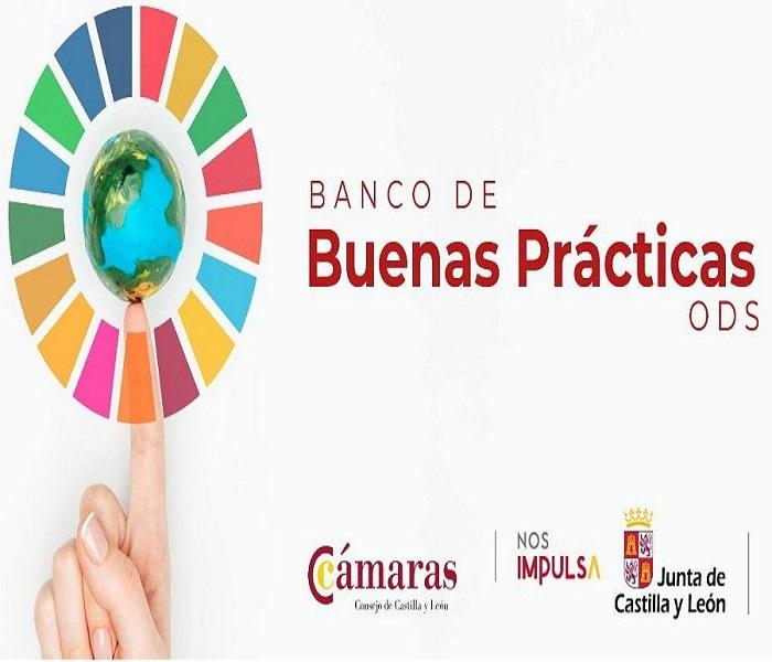 El Consejo de Cámaras de Castilla y León lanza el banco de buenas prácticas ODS para impulsar el cumplimiento de los ejes de la Agenda 2030 en el tejido empresarial