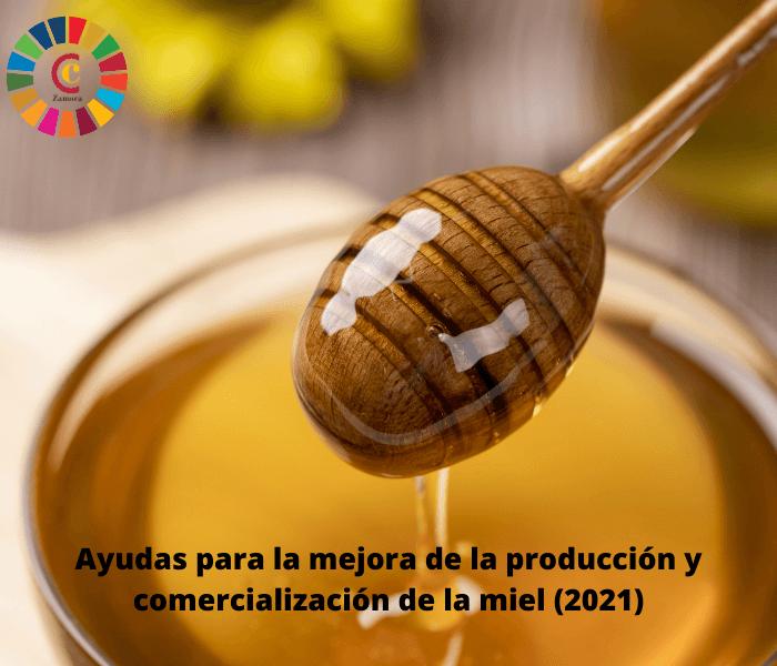 Ayudas para la mejora de la producción y comercialización de la miel (2021)