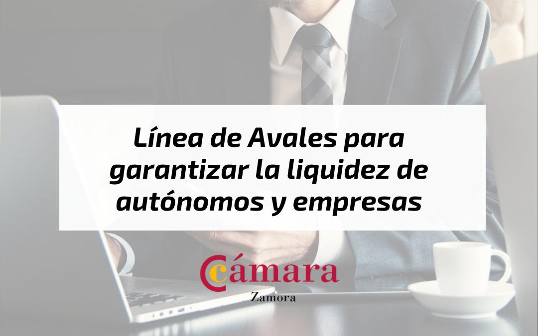 Línea de Avales para garantizar la liquidez de autónomos y empresas