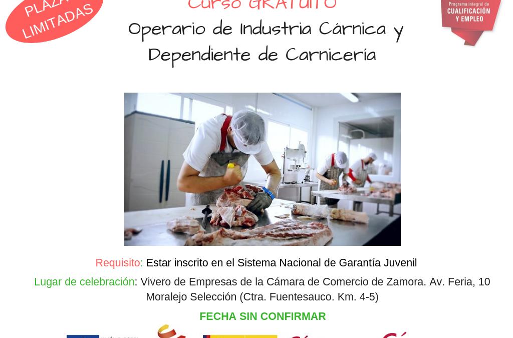 Curso Gratuito «Operario de Industria Cárnica y Dependiente de Carnicería»