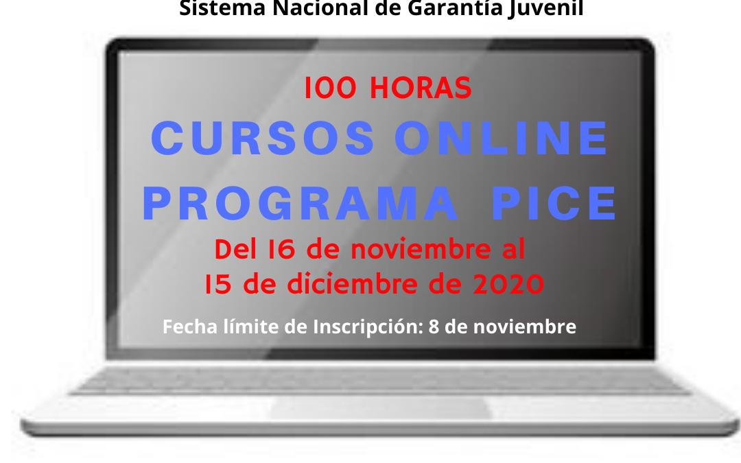 Cursos Online Gratuitos Programa PICE