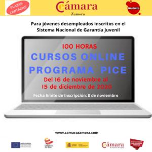 Cursos Pice Online Noviembre_Diciembre
