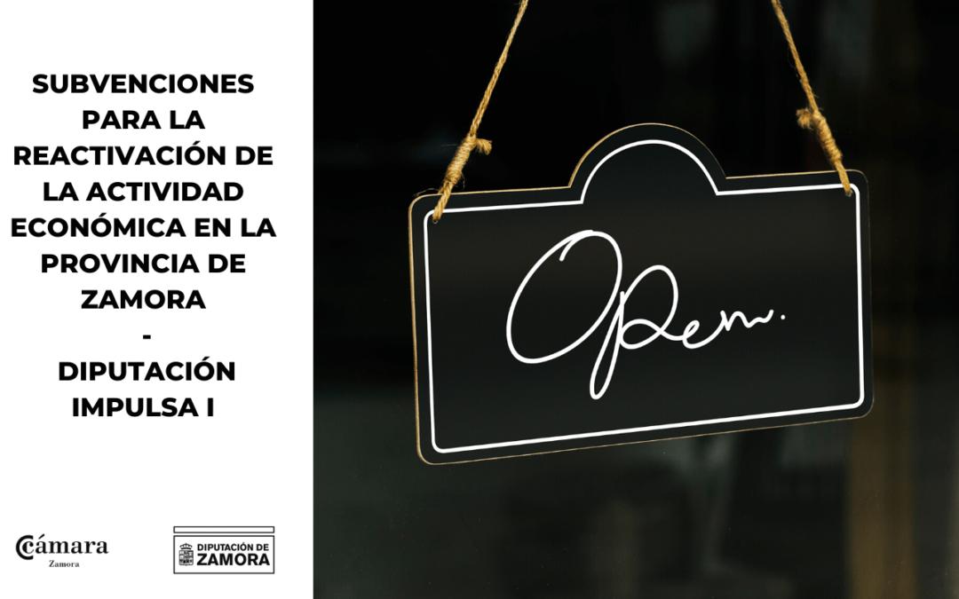 Subvenciones para la reactivación de la actividad económica de la provincia de Zamora (Diputación Impulsa I – Ayudas a Autonómos Y Pymes)