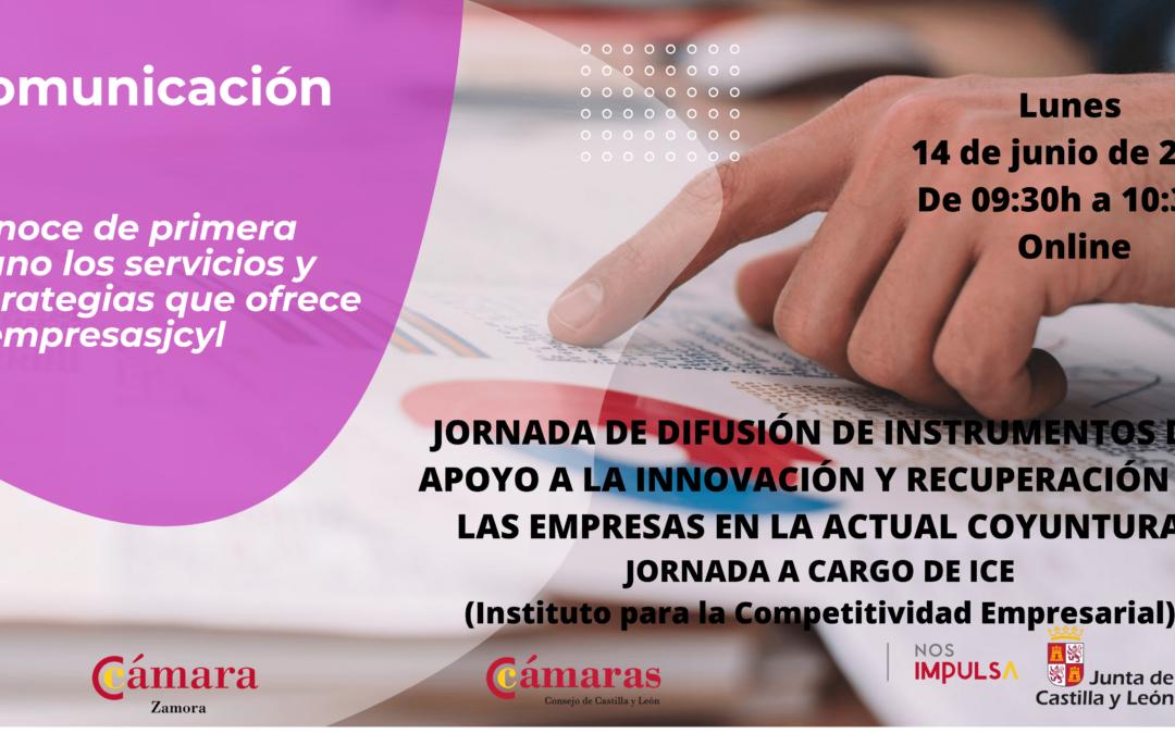 Jornada Online Gratuita «Difusión de instrumentos de apoyo a la innovación y recuperación de las empresas en la actual coyuntura»