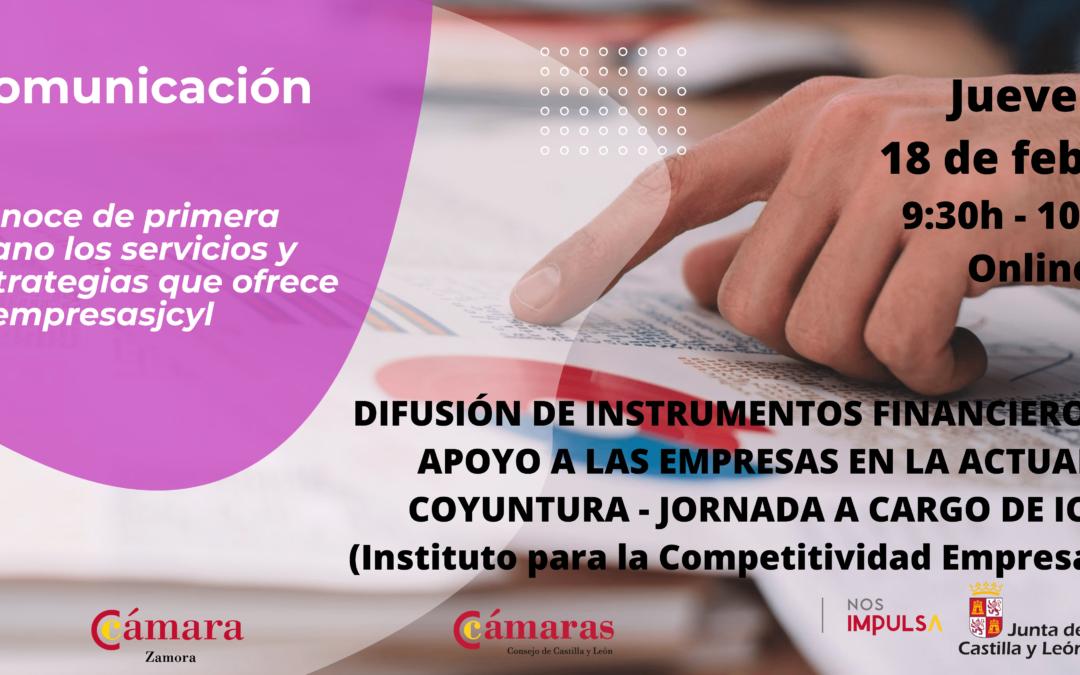 Jornada Informativa Online «Difusión de instrumentos financieros de apoyo a las empresas en la actual coyuntura»