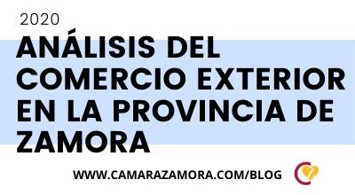 Análisis del Comercio Exterior de la Provincia de Zamora 2020