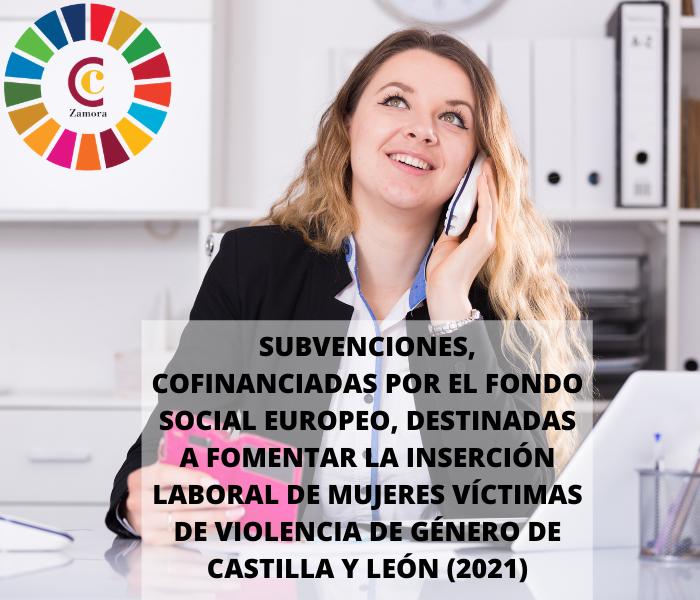 Subvenciones, cofinanciadas por el fondo social europeo, destinadas a fomentar la inserción laboral de mujeres víctimas de violencia de género de castilla y león (2021)