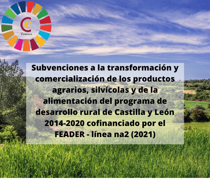 Subvenciones para inversiones en transformación/comercialización y/o desarrollo de productos agrícolas del Programa de Desarrollo Rural de Castilla y León
