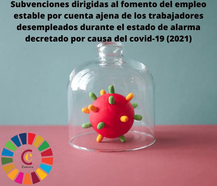 Subvenciones dirigidas al fomento del empleo estable por cuenta ajena de los trabajadores desempleados durante el período de duración del estado de alarma decretado por causa del covid-19 (año 2021)