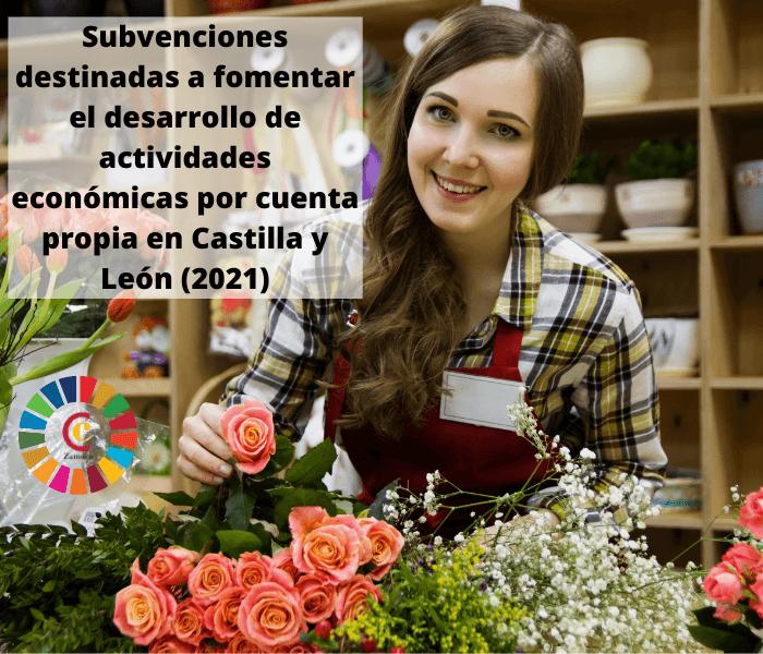 Subvenciones destinadas a fomentar el desarrollo de actividades económicas por cuenta propia en Castilla y León (2021)