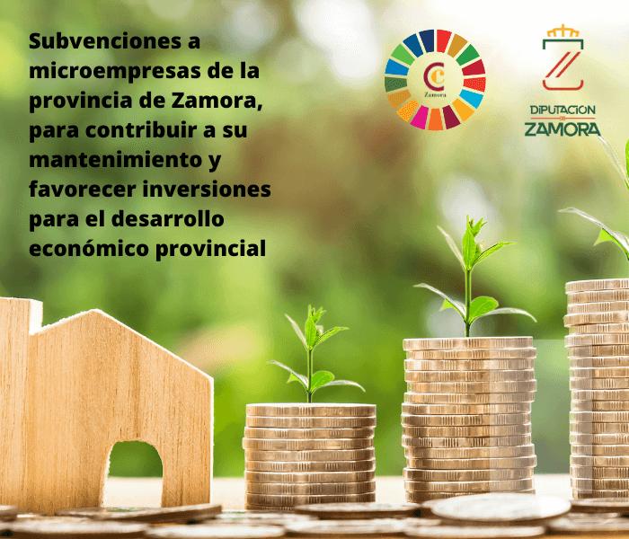 Subvenciones a microempresas de la provincia de Zamora, al objeto de contribuir tanto a su mantenimiento como a favorecer inversiones en sectores que representen oportunidades para el desarrollo económico provincial