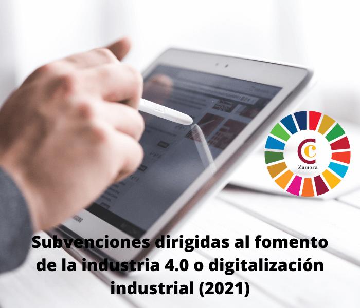 Subvenciones dirigidas al fomento de la industria 4.0 o digitalización industrial (2021)