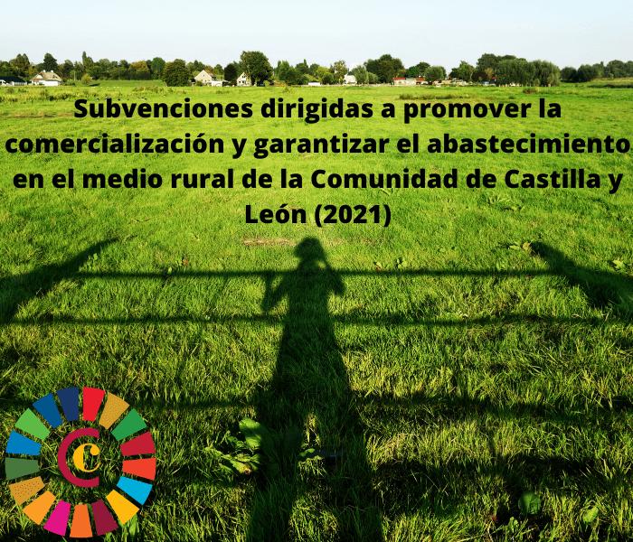 Subvenciones dirigidas a promover la comercialización y garantizar el abastecimiento en el medio rural de la Comunidad de Castilla y León (2021)