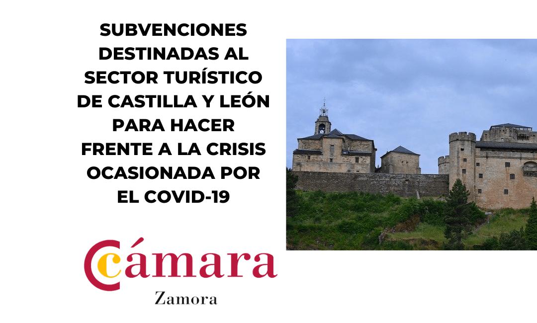 Subvenciones destinadas al Sector Turístico para hacer frente a la crisis ocasionada por el Covid-19