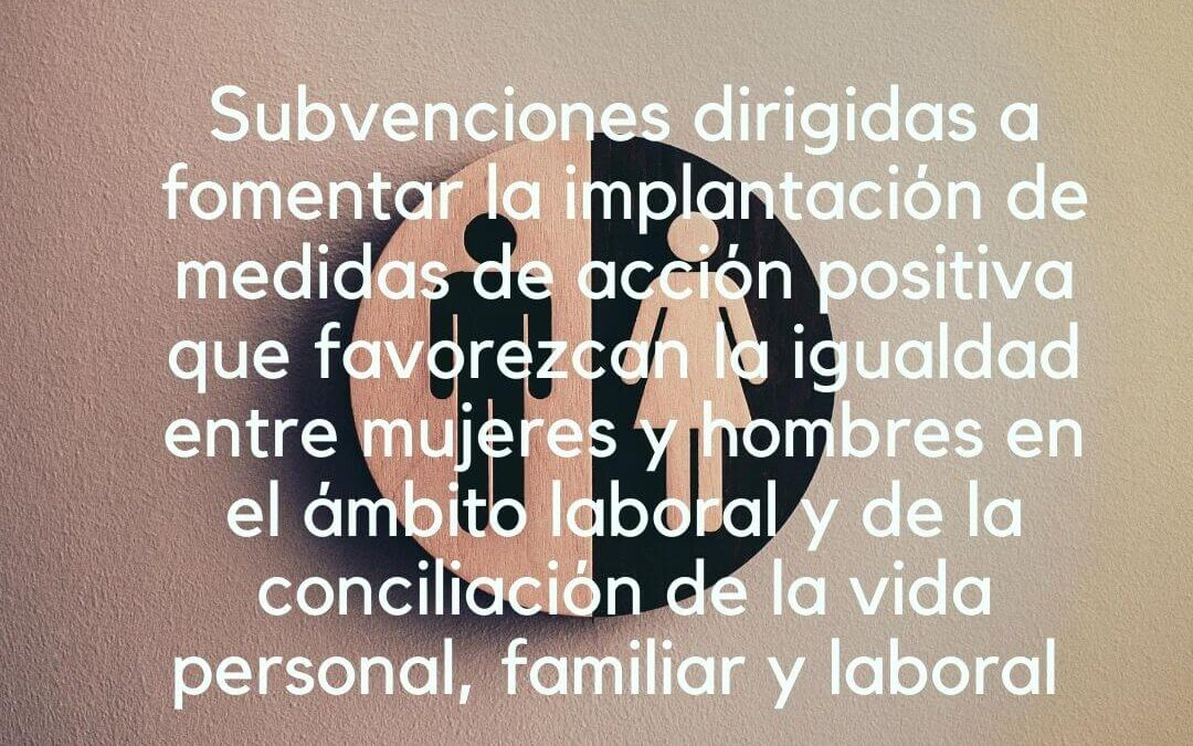 Subvenciones dirigidas a fomentar la implantación de medidas de acción positiva que favorezcan la igualdad entre mujeres y hombres en el ámbito laboral y de la conciliación de la vida personal, familiar y laboral en Castilla y León