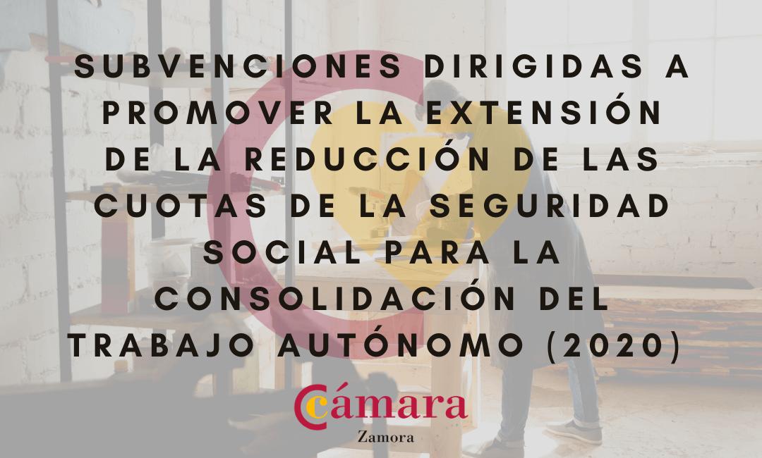 Subvenciones dirigidas a promover la extensión de la reducción de las cuotas de la Seguridad Social para consolidación del trabajo autónomo (2020)
