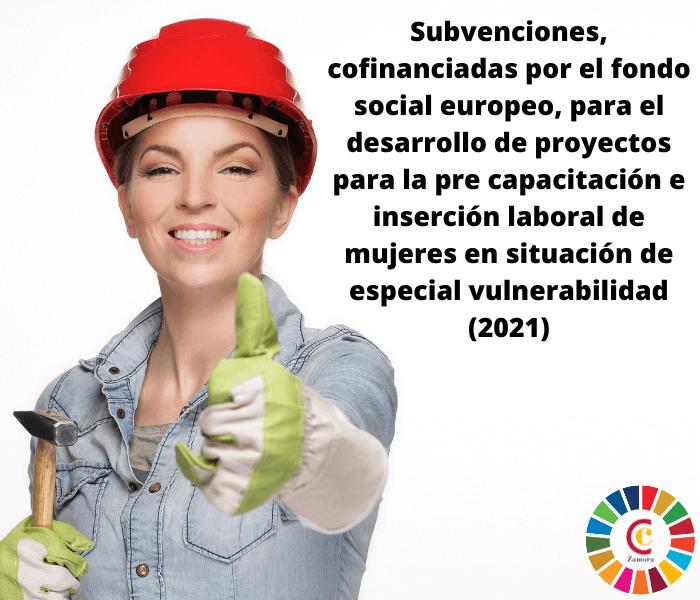 Subvenciones, cofinanciadas por el fondo social europeo, para el desarrollo de proyectos para la pre capacitación e inserción laboral de mujeres en situación de especial vulnerabilidad (2021)