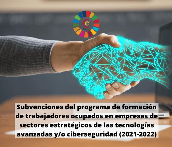Subvenciones del programa de formación de trabajadores ocupados en empresas de sectores estratégicos de las tecnologías avanzadas y/o ciberseguridad (2021-2022)