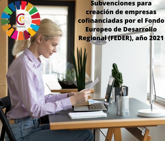 Subvenciones para creación de empresas cofinanciadas por el Fondo Europeo de Desarrollo Regional (FEDER), año 2021