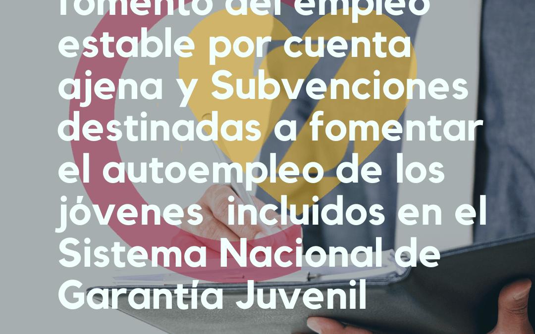 Subvenciones para el fomento del empleo estable por cuenta ajena y Subvenciones destinadas a fomentar el autoempleo de los jóvenes incluidos en el Sistema Nacional de Garantía Juvenil