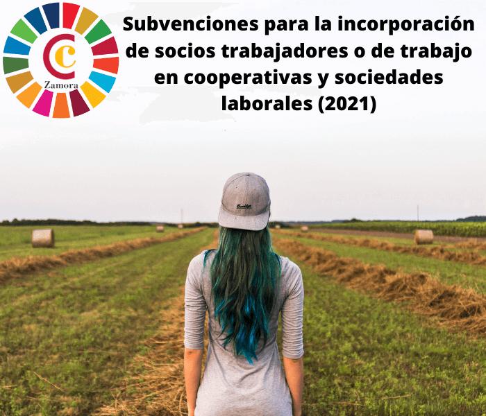 Subvenciones para la incorporación de socios trabajadores o de trabajo en cooperativas y sociedades laborales (2021)