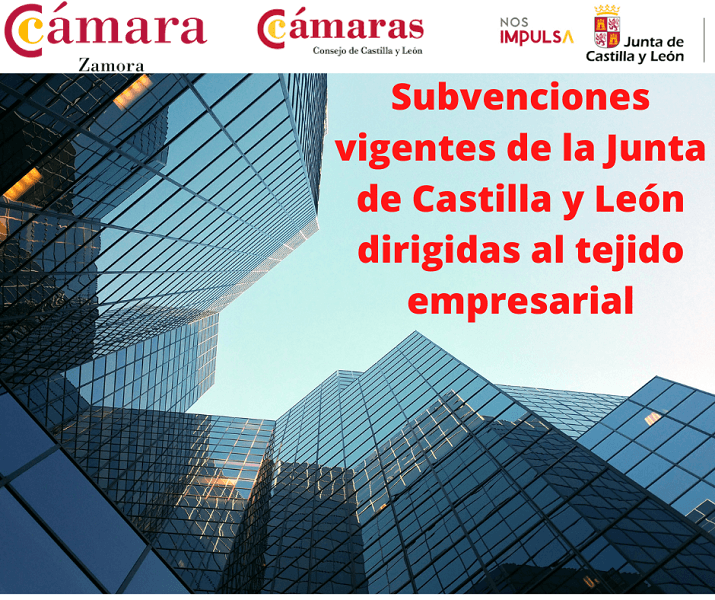 Subvenciones vigentes de la Junta de Castilla y León dirigidas al tejido empresarial