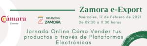 Vender tus productos a través de Plataformas Electrónicas con el proyecto Zamora e-Export