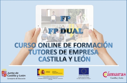 Curso Online de Formación de Tutores de Empresa