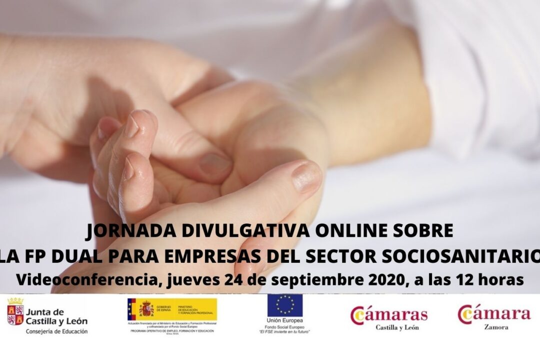 Jornada Divulgativa sobre la FP Dual para Empresas del Sector de la Atención Sociosanitaria